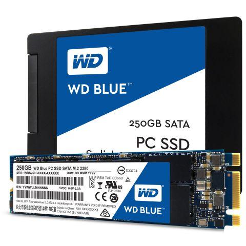 Western Digital presenta gli SSD WD Blue e WD Green